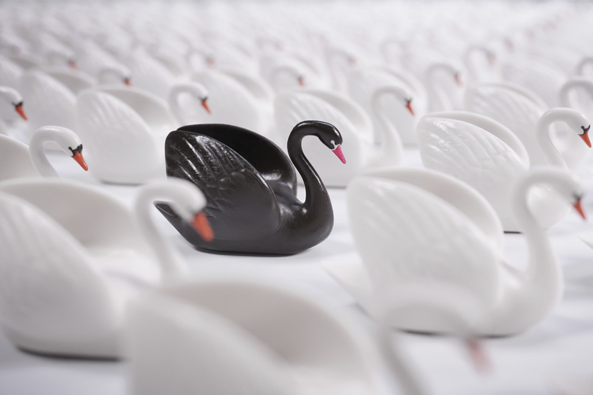 Black swan effect refers to the occurrence of some unexpected event. In the crypto market, it can take various forms and become a risk.