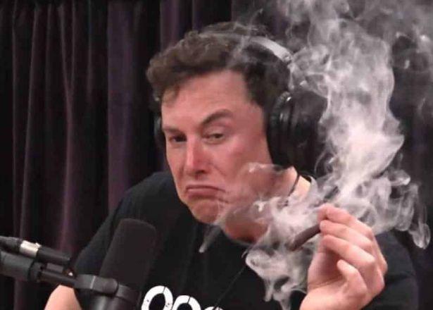 Elon Musk smoking cannabis